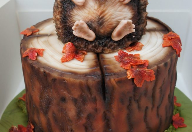 Hedgehog Log cake